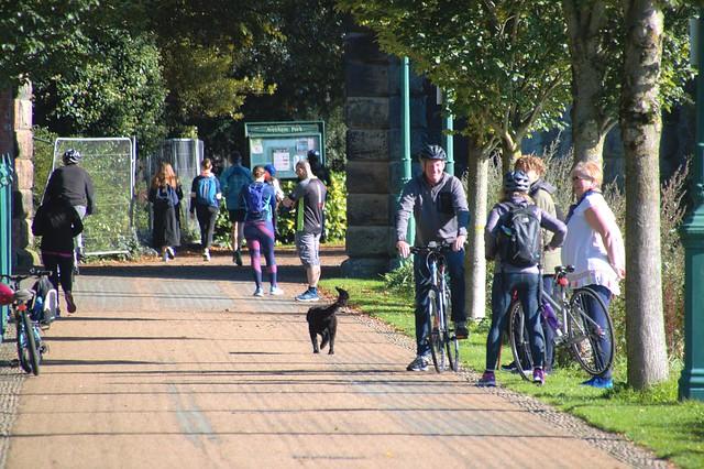 People at Miller Park at Preston