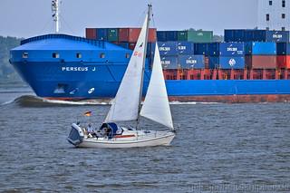 Segelyacht auf der Elbe vor Lühe