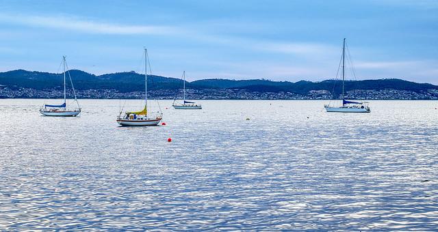 Yachts on the Derwent