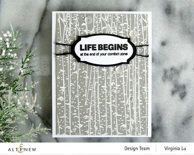 10272020-Birch Forest-Apothecary Labels Nesting Die Set -002