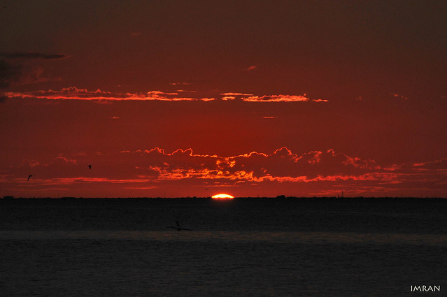 Red Hot Sunset & Cold Blue Sea In Harmony At Tampa Bay Florida - IMRAN™