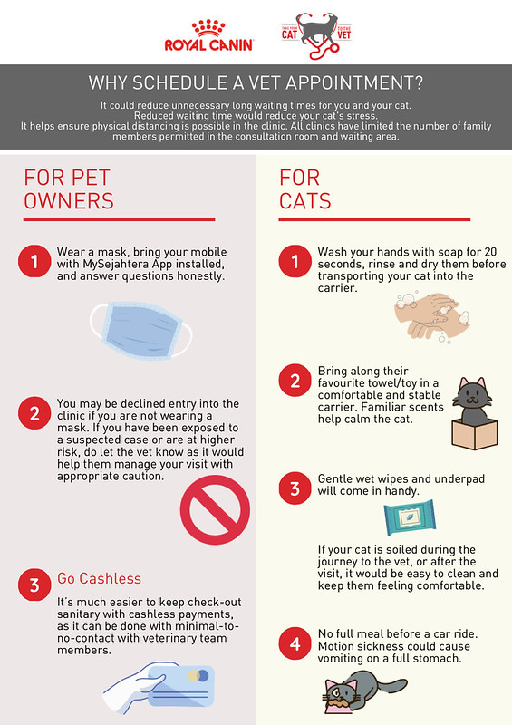 Royal Canin_TYCTTV Tips Infographic_Final