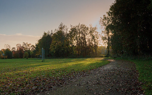 park trees 60d canon60d leadinglines autumn sunrise