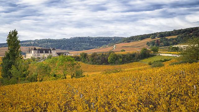 Château du Clos de Vougeot - Bourgogne