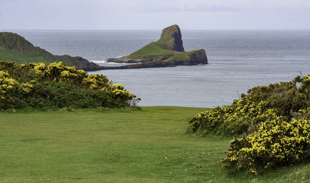 Worms Head From Rhossili Point, Showing the Low-tide Causeway - Gower Peninsula 7