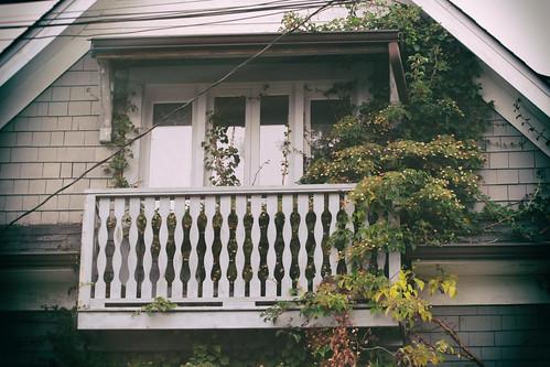 balcony overgrowth