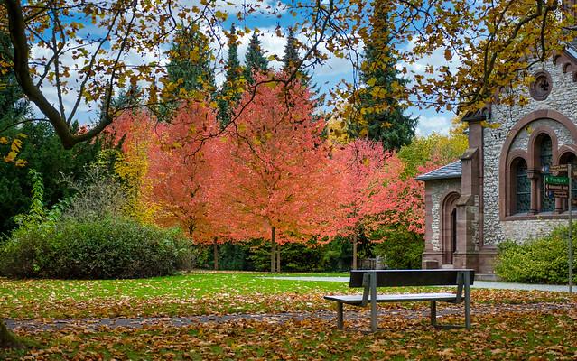 Enjoy autumn - Explore! October 27, 2020