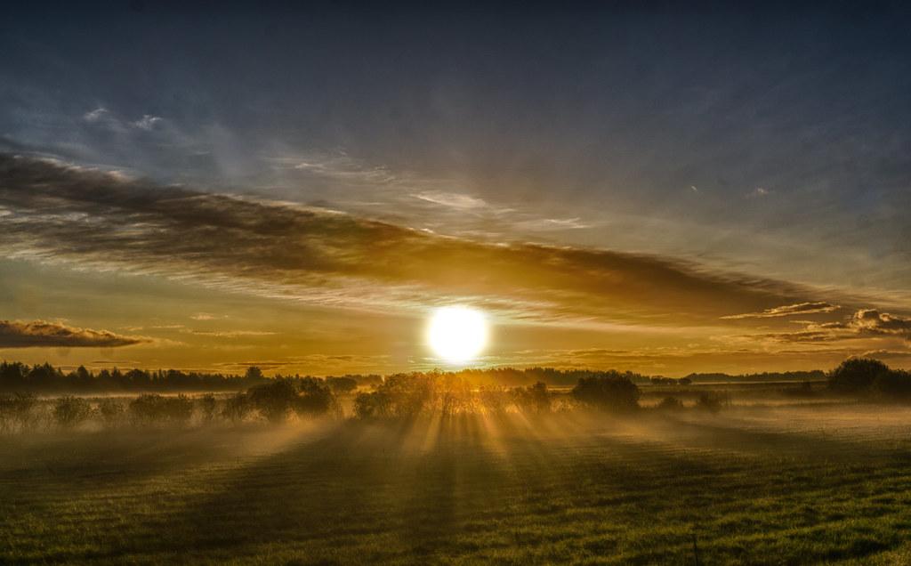 Wenn die Sonne den Nebel durchbricht...