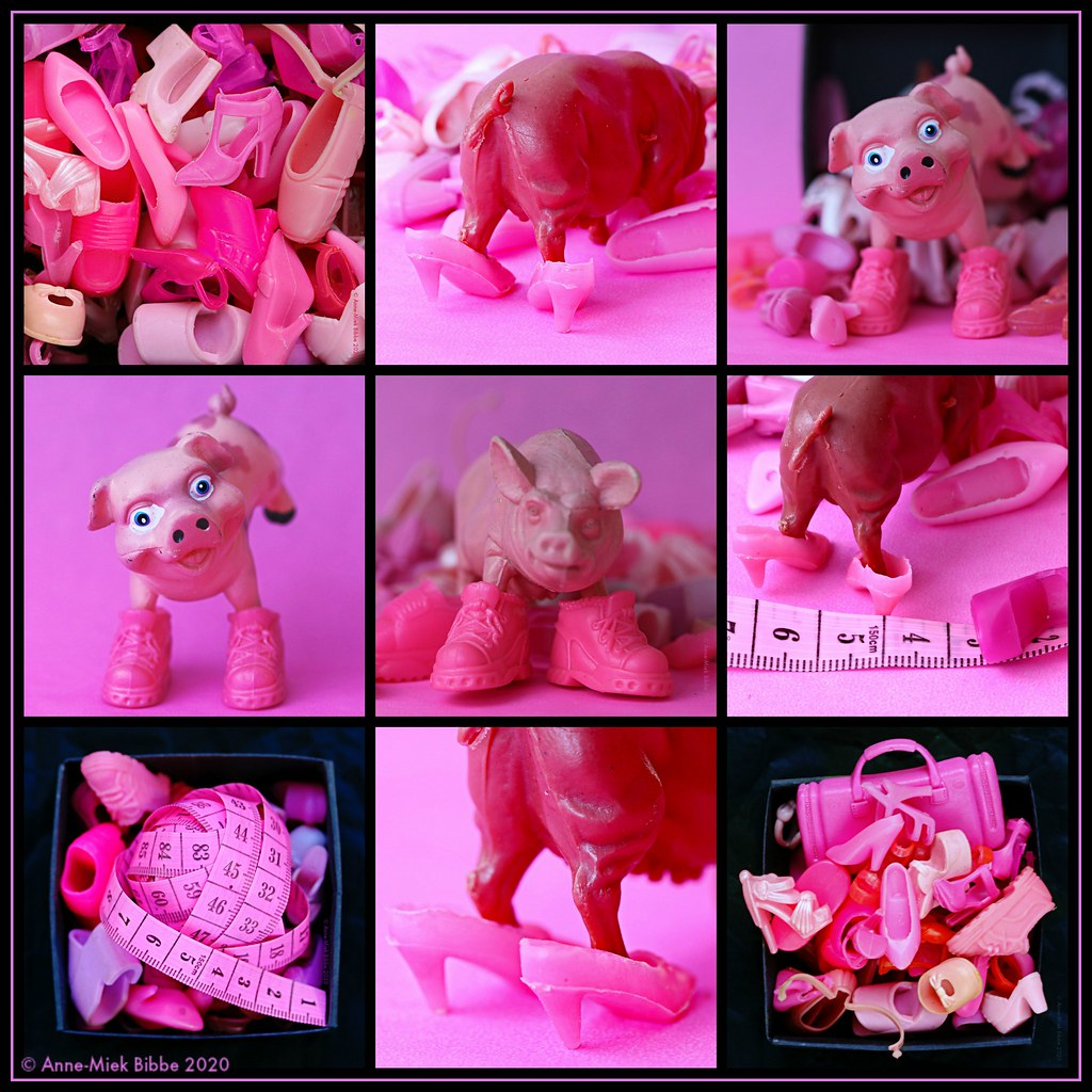 THE COLOR PINK || ZOET ROZE