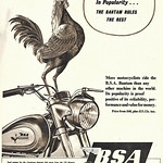 Sun, 2020-10-25 11:12 - The ubiquitous BSA Bantam, my cousin bought a trials version of it in the late 1960's. The most popular motor cycle in the world in 1954 - pre-Honda cub days.