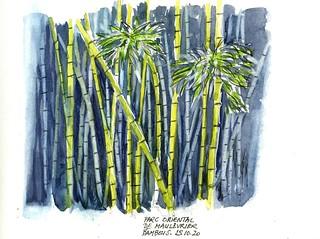 Parc oriental de Maulévrier - Bambous - 25 10 2020