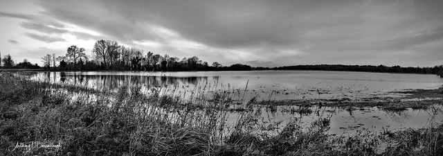 Winter Flood Meadow Panorama 505bws1-1