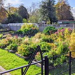 Ashton Park's Lets Grow gardens