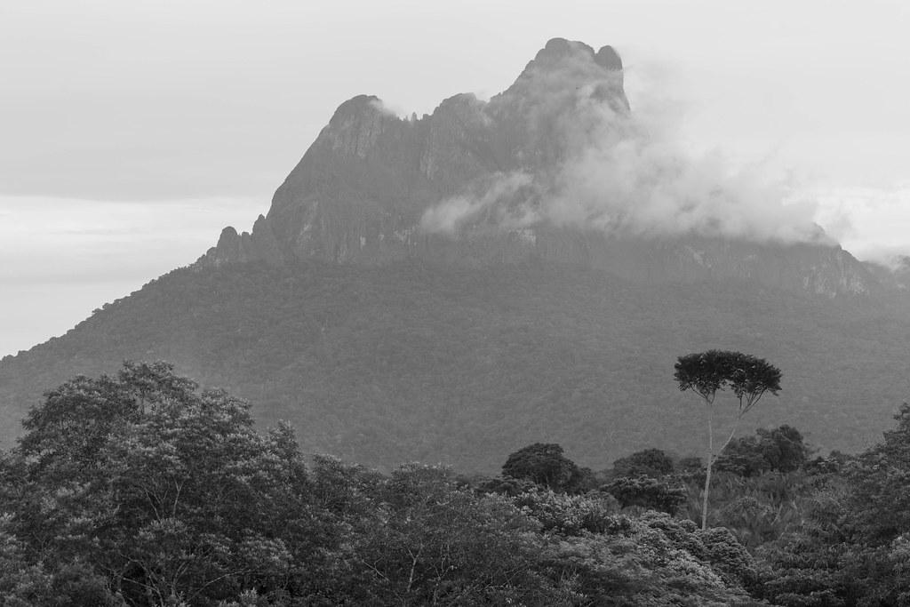 Maturacá- Terra Indígena Yanomami