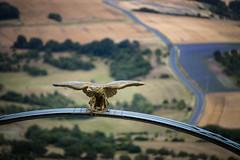 Adlerbogen bei Dannenfels