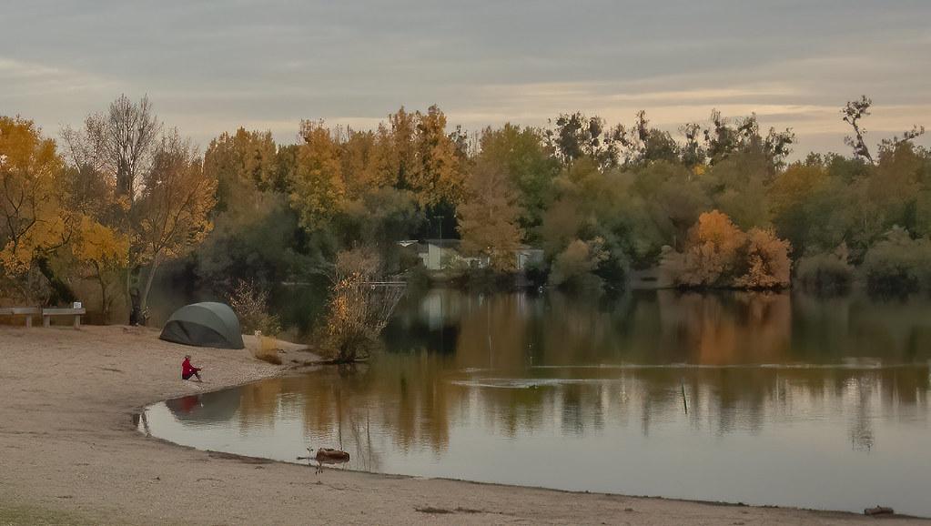 Au bord de l'étang... + nouveau cadrage... 50533316423_b1334e9365_b