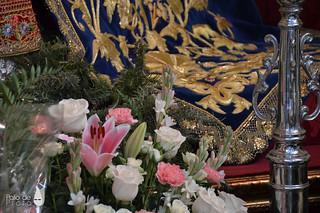 Ofrenda Floral 14