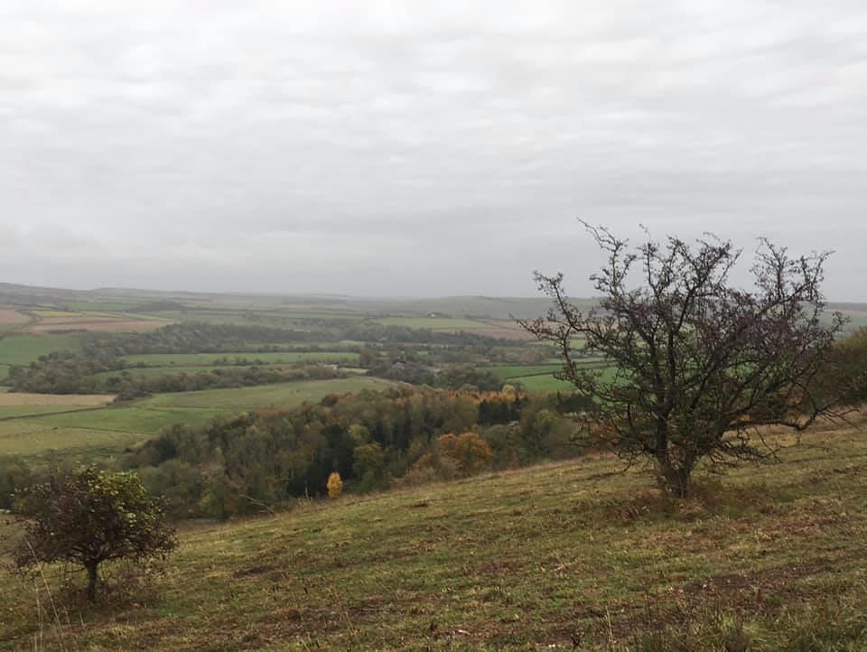 Arun Valley Arundel to Amberley (backwards)