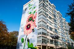 Mural by Korallpionen
