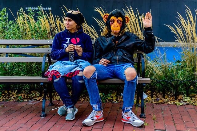 MonkeyShines(NYC)