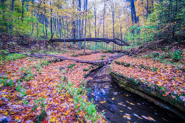 McConnells Mill State Park (2)
