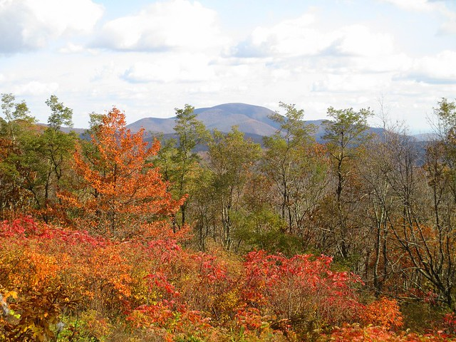 Fall at Fork Mountain Overlook
