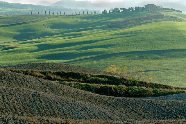 Early Morning View over Ploughed Fields of Farmhouse and Cypress Trees - Tuscany Details 34