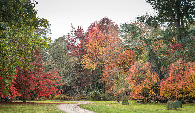 Exbury Gardens-2927.jpg