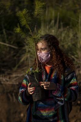 Asua Reforestacion 2020