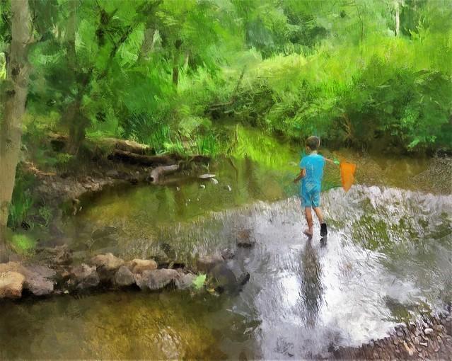 hunting crawdads , New England Nature Hike
