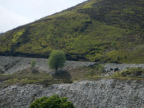 Surrounding landscape on our drive to Llangollen, Wales