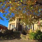 Golden Autumn at Avenham, Preston