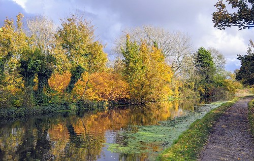 Autumn by the canal at Preston | by Tony Worrall