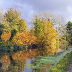 Autumn by the canal at Preston