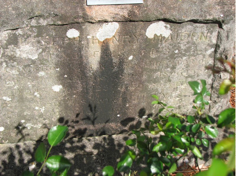 J H Maiden grave St John's Anglican Church Gordon NSW 2