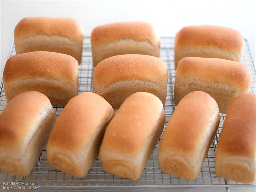 ライム酵母の全粒粉ミニ食パン 20201017-DSCT6959 (3)