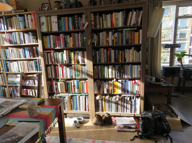 Morning light on my bookcases
