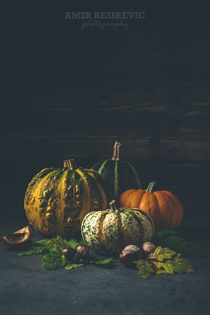 As I try to conjure up the colors of autumn, small cute pumpkins are a necessary detail in that description...