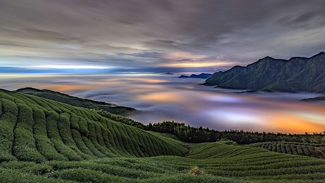 大崙山~茶園琉璃~ Tea fields Colored glass light
