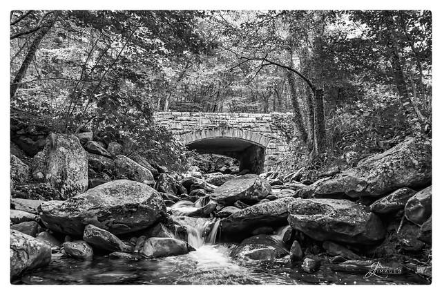 Bridge in Smokey Mountains in B/W