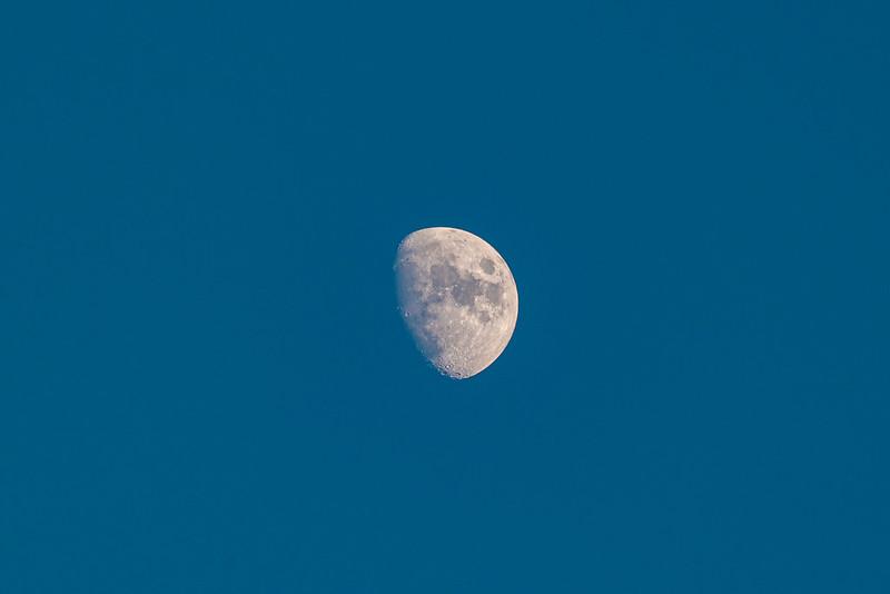 Moon|TAICHUNG