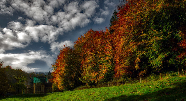 Autumn colours at Woodchester Mansion