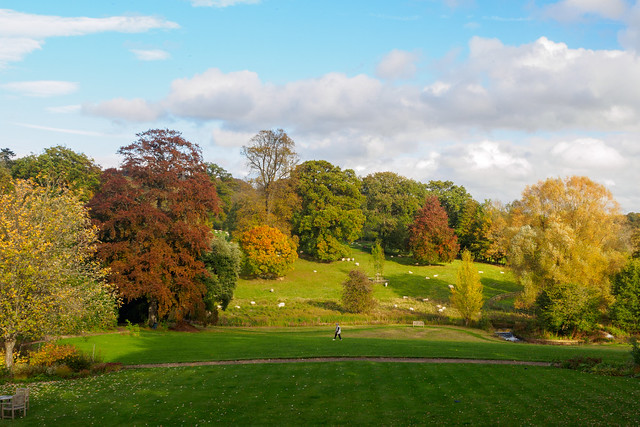 Cotswold Autumn