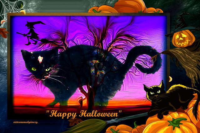 THE HALLOWEEN BLACK CAT