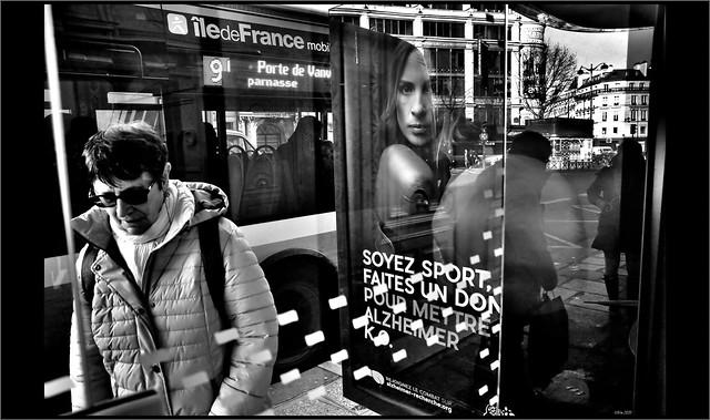 Le petit monde de l'abri-bus
