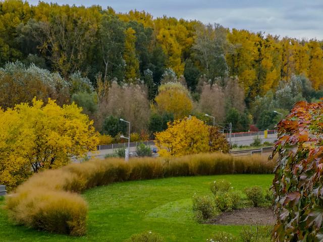 The scene of an Autumn season.
