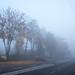 Nebel in der Stadt-bw_20201025_0358.jpg
