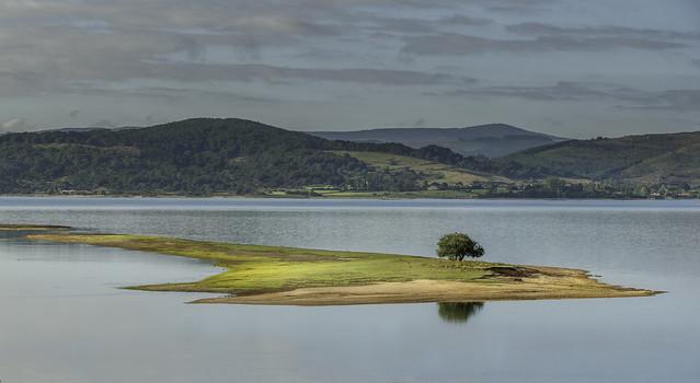 Una isla en el pantano...