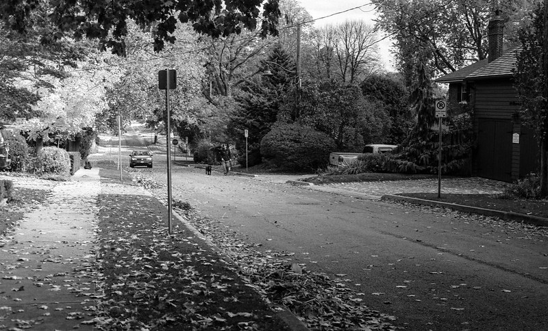 Fall on King St._
