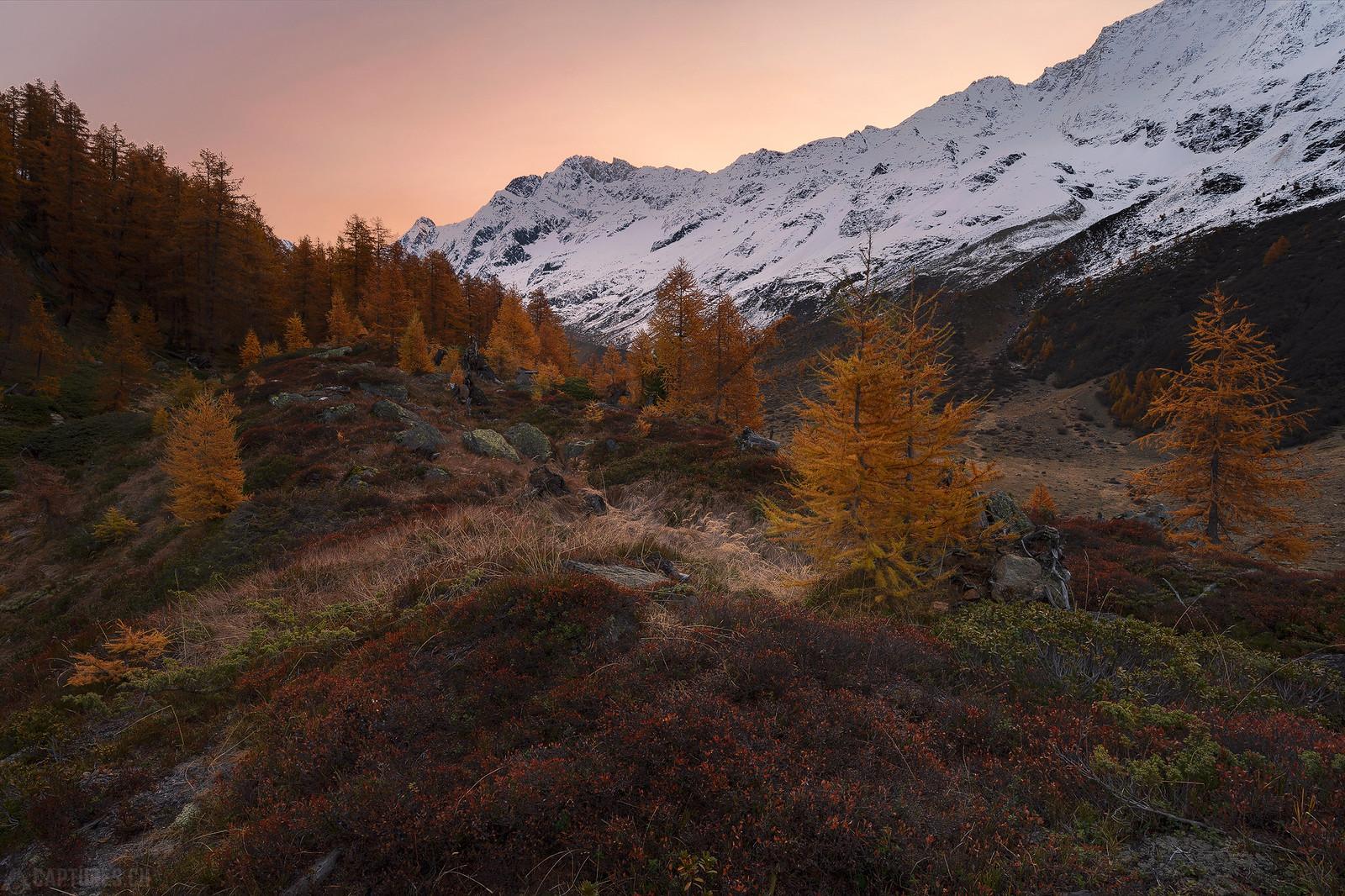 Sunrise colors - Lötschental
